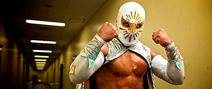 Mexican Wrestling Lucha Libre Mask Mascara de Luchador Brazo De Plata
