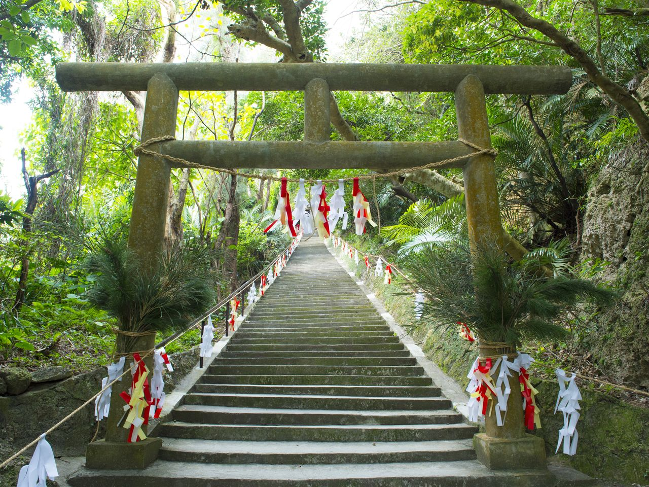 The Shirumichū sacred spot is at the top of these steps, whose entrance is marked by a <em>torii</em> gate.