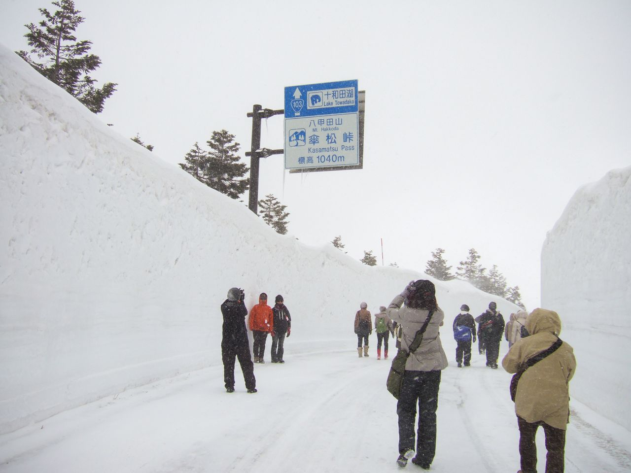 Visitors on the Hakkōda Walk make their way through a tall corridor of plowed snow. The Hakkōda-Towada Gold Line is closed during the winter, but the section between Sukayu and Yachi is opened for just two days at the end of March to allow visitors a preview of the snow corridor before the Gold Line opens for spring. (© Aomori Prefecture Tourism Federation)