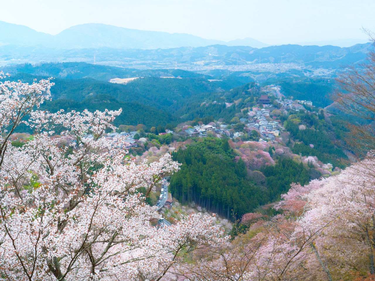 The view from the vicinity of Hanayagura Observation Deck, 600 meters above sea level.