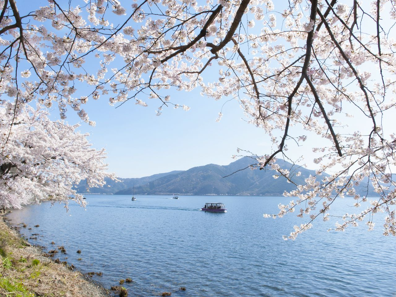 Tour boats depart from the Kaizu fishing port, Nihonmatsu, Takagihama, and several other points along the lake's edge.