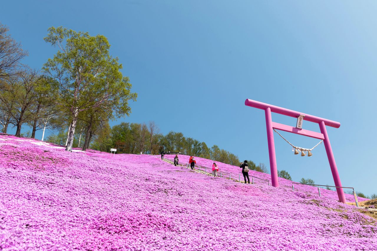 The stairs to the observation deck are marked by this distinctive pink <em>torii</em>.