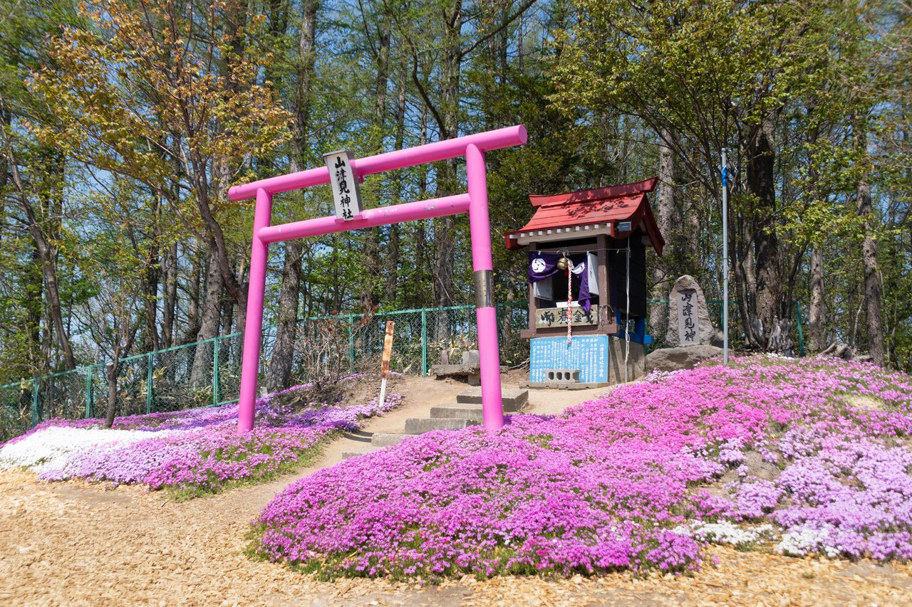 Dedicated to the Shintō deities of the mountain, Yamatsumi Shrine stands further up the slope beyond the observation deck, and sports another pink orii.