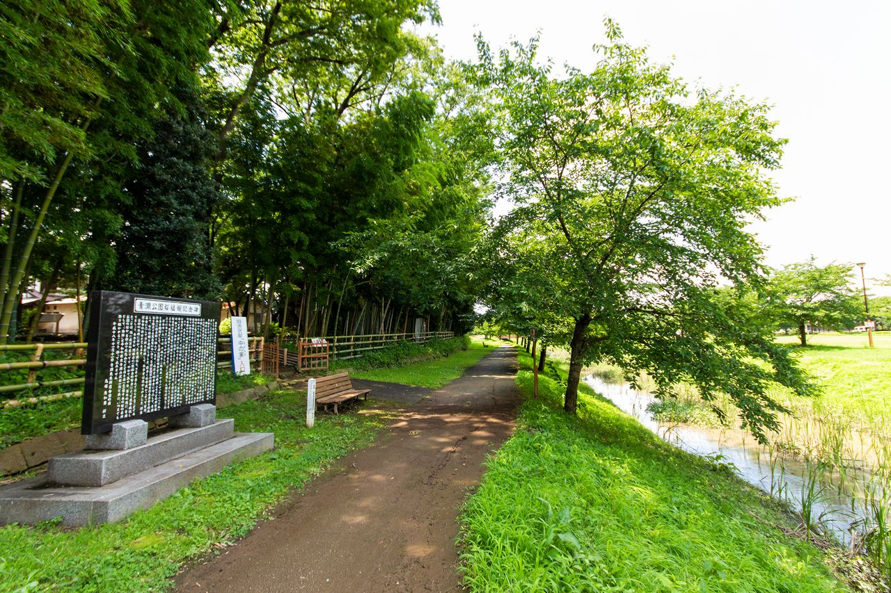 The rear garden of Nakanchi is directly accessible from the park. The entrance is near a stone monument describing the planting of cherry trees in Seien Park.