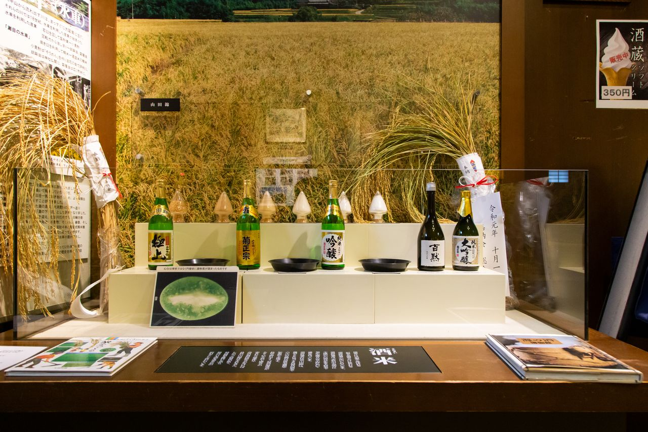 An exhibit on rice for sake brewing. The Kiku Masamune Brewery contracted with rice growers in Miki, Hyōgo Prefecture in the late nineteenth century to grow the rice for its sake. The area is now famous for growing Yamadanishiki.