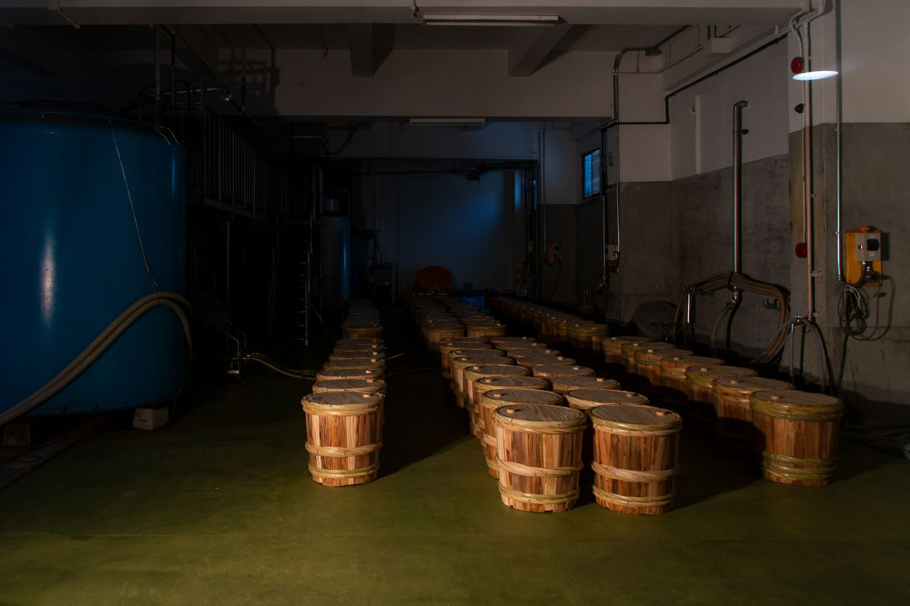Factory visitors can view barrels imparting their cedar scent to the sake before bottling.