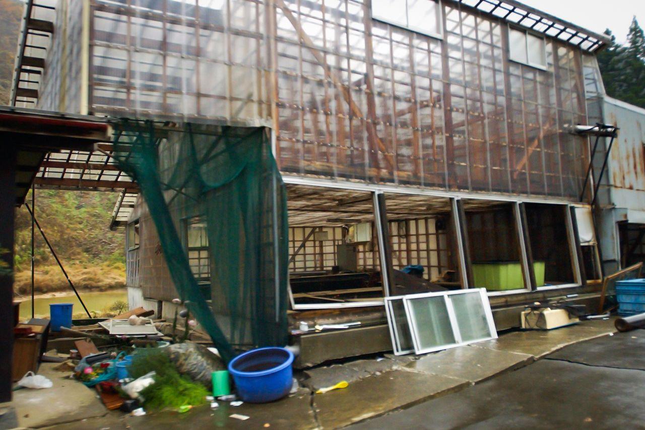 Sebulan setelah gempa bumi, sebuah pertanian nishikigoi di Yamakoshi terbengkalai. (© Jiji)