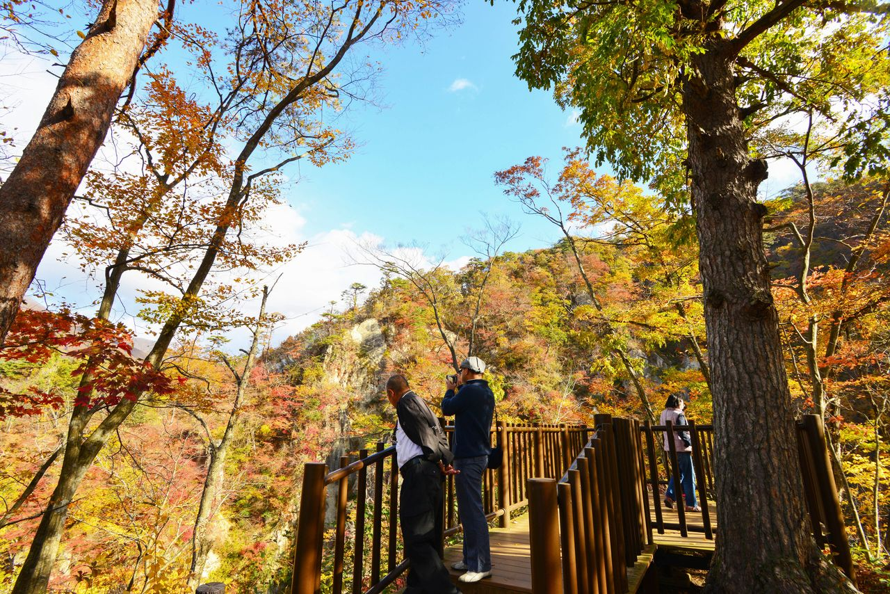 Walking trails and observation decks give visitors an easy way to enjoy the splendors of Naruko-kyō. (© Shoe Press)