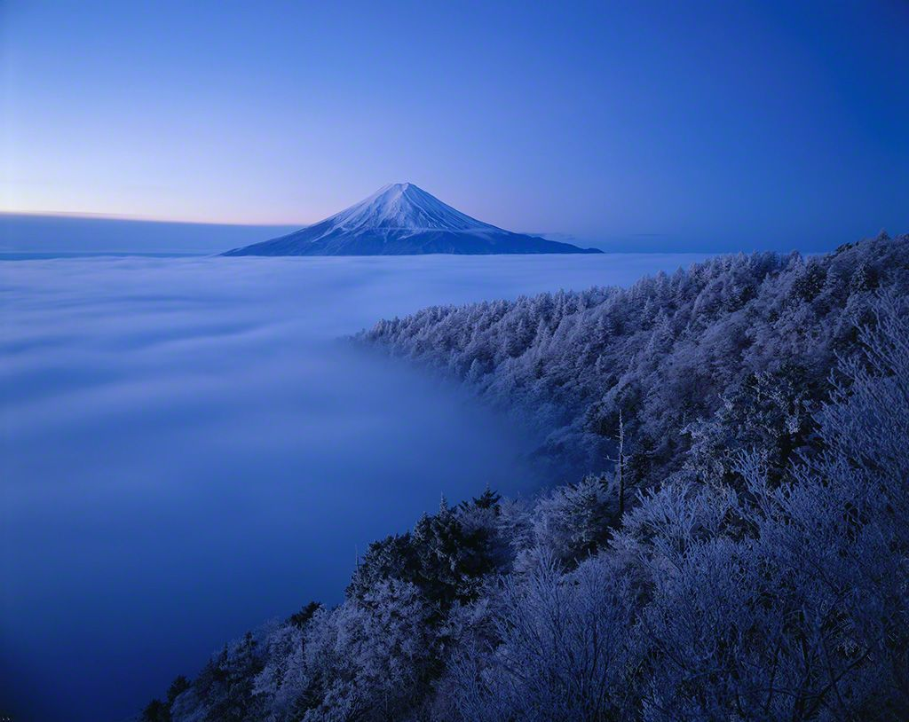 Mount Fuji behind an icy forest (March)