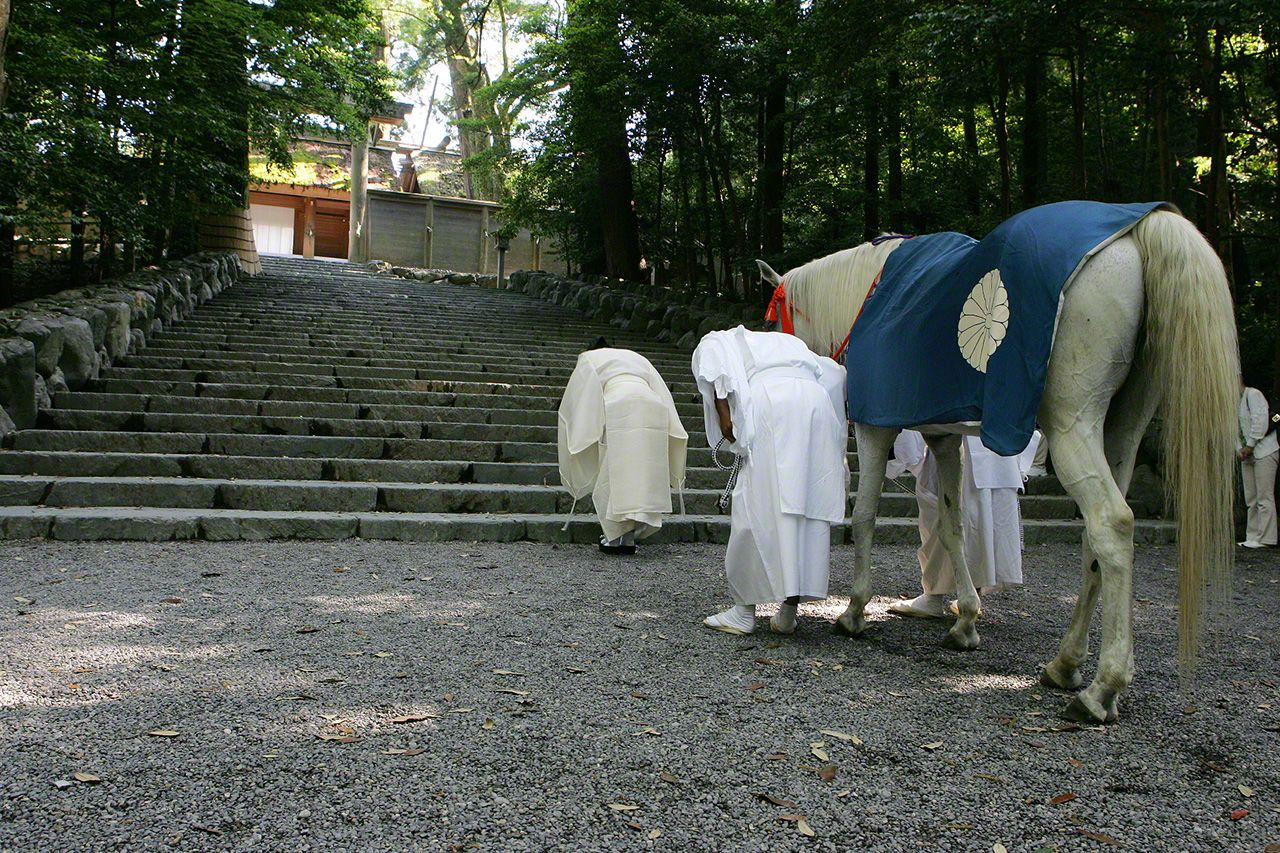 July 11<br>Sacred horses have been a fixture in many Shinto shrines since ancient times. On the first, eleventh, and twenty-first days of each month, the sacred white horse joins in a procession to the bottom of the stone steps before the main shrine building and bows its head.