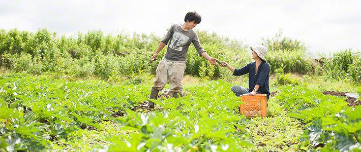 A Family Farm (Photos) | Nippon com