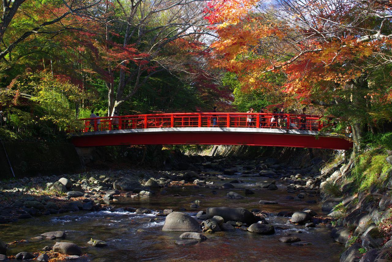 Katsurabashi, Shuzenji Onsen. (© Pixta)