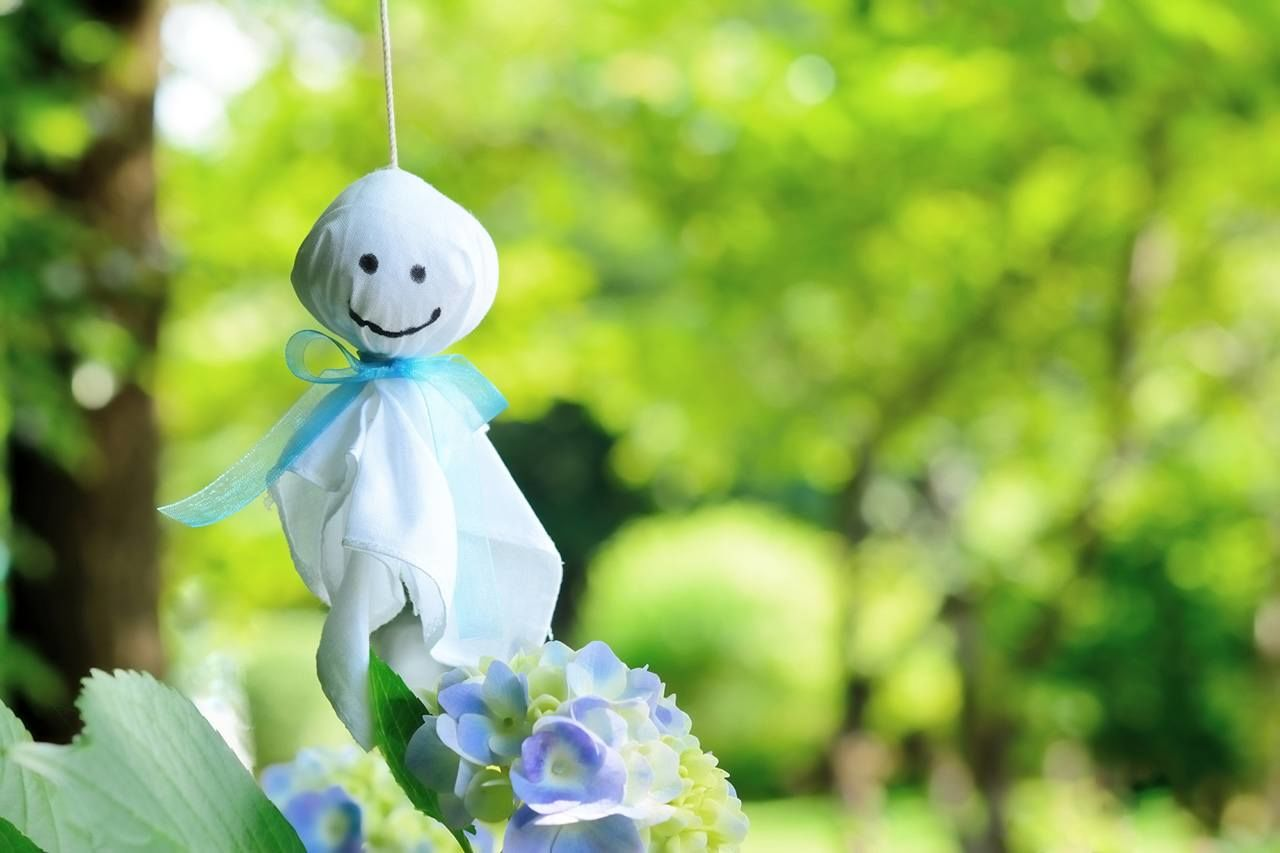 Hydrangeas bloom in the rainy season. People hang teruteru bōzu dolls made from white paper or cloth to express their wish for fine weather.