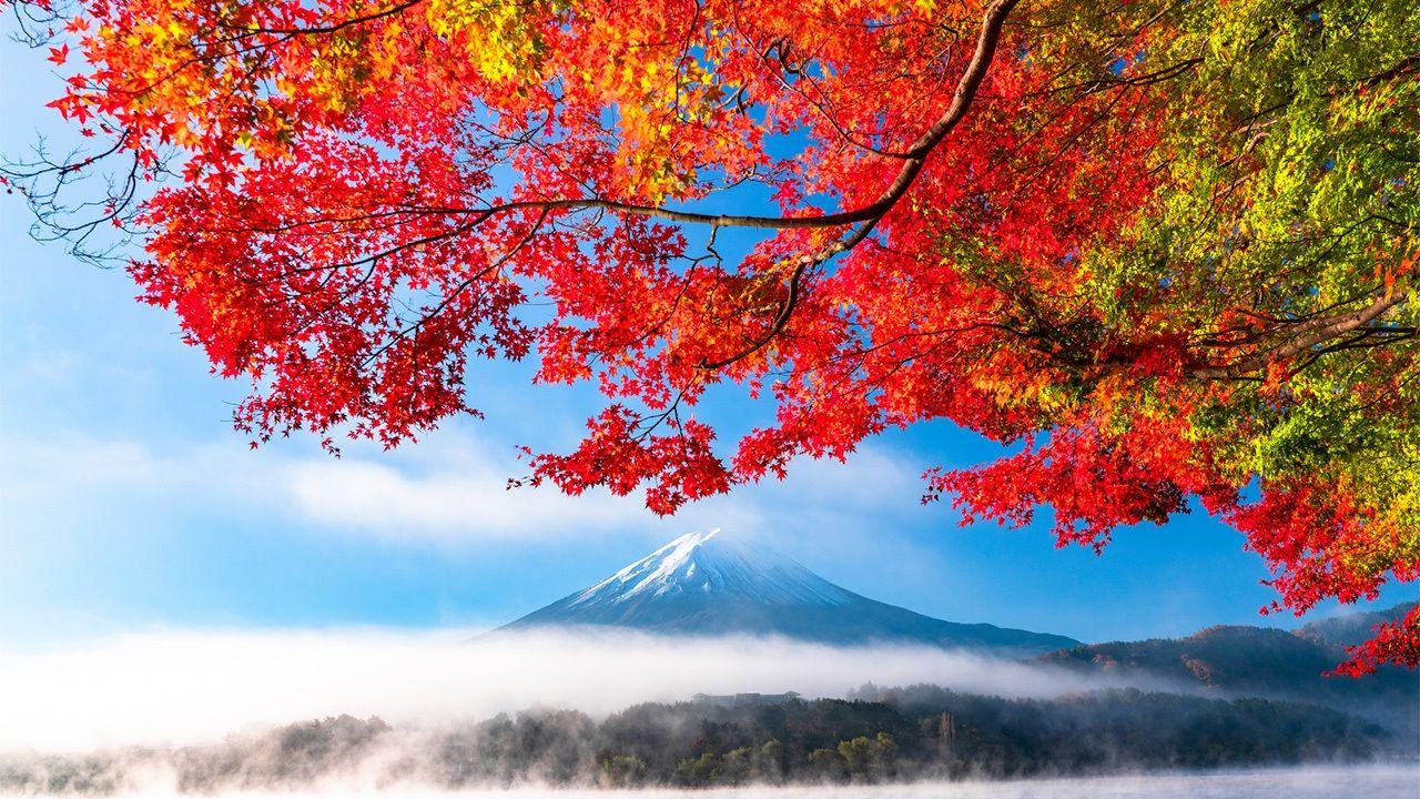 Autumn in Japan   Nippon.com