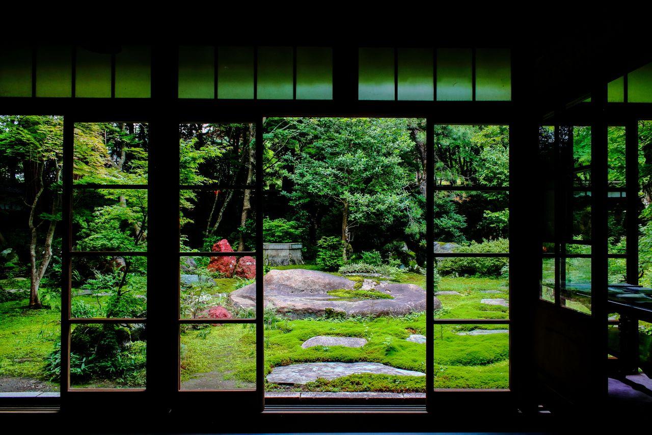Un tapis de mousse recouvre le sol du jardin de la Nakano House Art Museum dans la préfecture de Niigata.