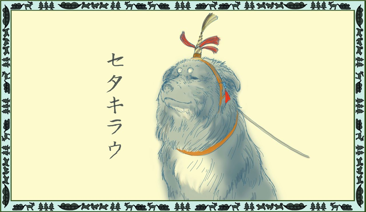 Sakhalin is at the southern edge of dog-sled culture in East Asia. The equipment and names used among the Sakhalin Ainu are very similar to those of northern peoples. The illustration shows a seta kiraw, a head decoration for the lead dog.