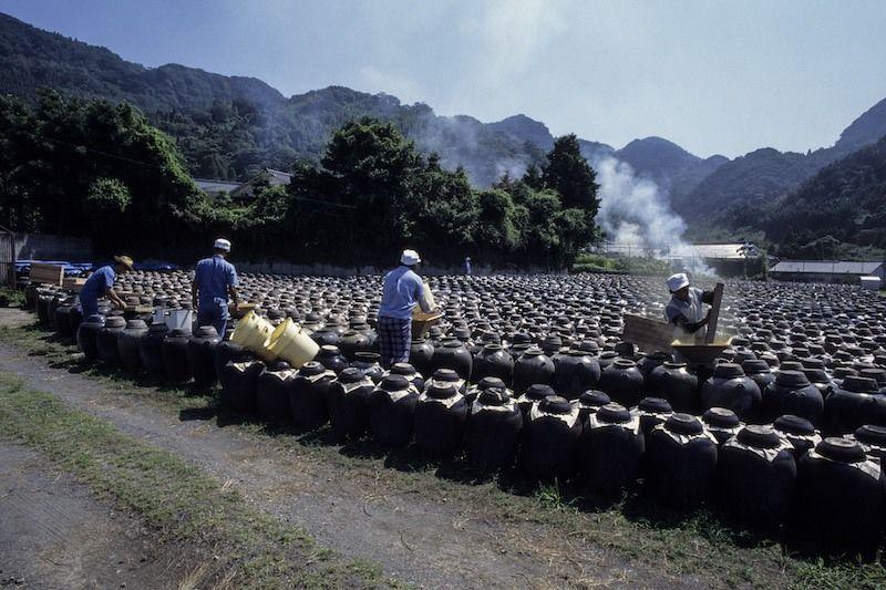 Le vinaigre de riz Kurozu mûrit dans des pots en céramique noire à Fukuyama, préfecture de Kagoshima. Les artisans adhèrent aux méthodes traditionnelles, laissant le liquide fermenter et vieillir lentement au soleil. © Ōhasshi Hiroshi