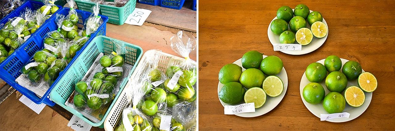 At a farm direct shop. Clockwise from bottom left: lime, sudachi, kizu. (© Nippon.com)