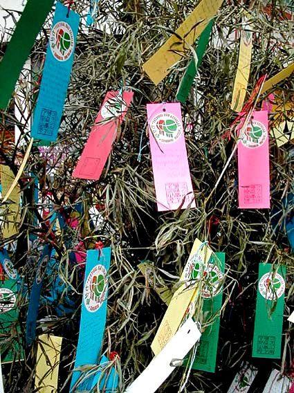 Tanzaku tempat orang-orang menuliskan keinginan selama festival bintang Tanabata.