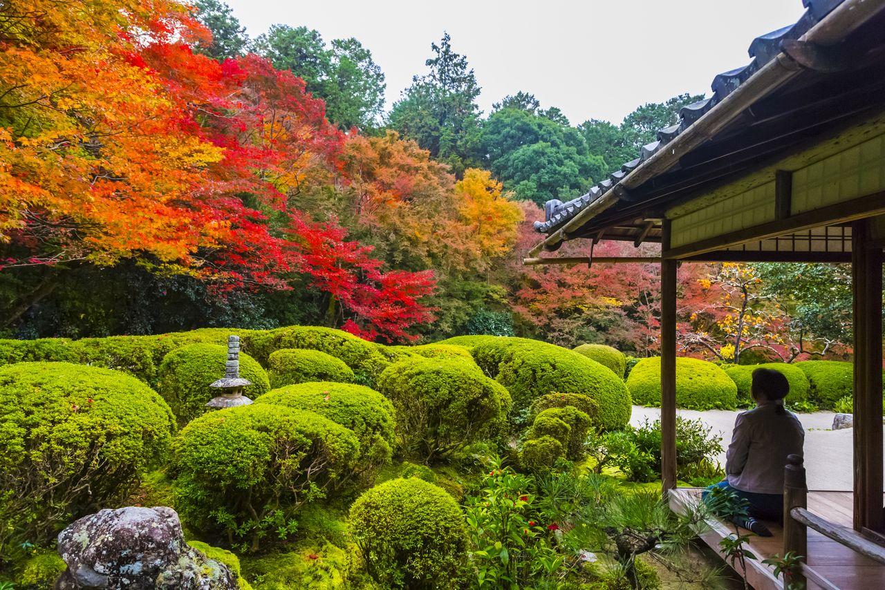 Shisendō Garden, a temple that was originally a villa for Tokugawa Ieyasu's vassal, Ishikawa Jōzan.