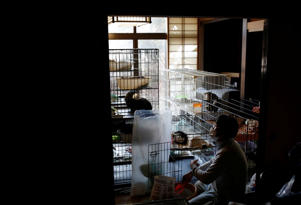 Sakae Kato cleans cat cages at his home, in a restricted zone in Namie, Fukushima Prefecture, Japan, February 20, 2021. Kato looks after 41 cats in his house and another empty building on his property. Kato looks after 41 cats in his home and another empty building on his property. A decade ago, he stayed behind to rescue cats abandoned by neighbours who fled the radiation clouds belching from the nearby Fukushima nuclear plant. He won't leave. I want to make sure I am here to take care of the last one,