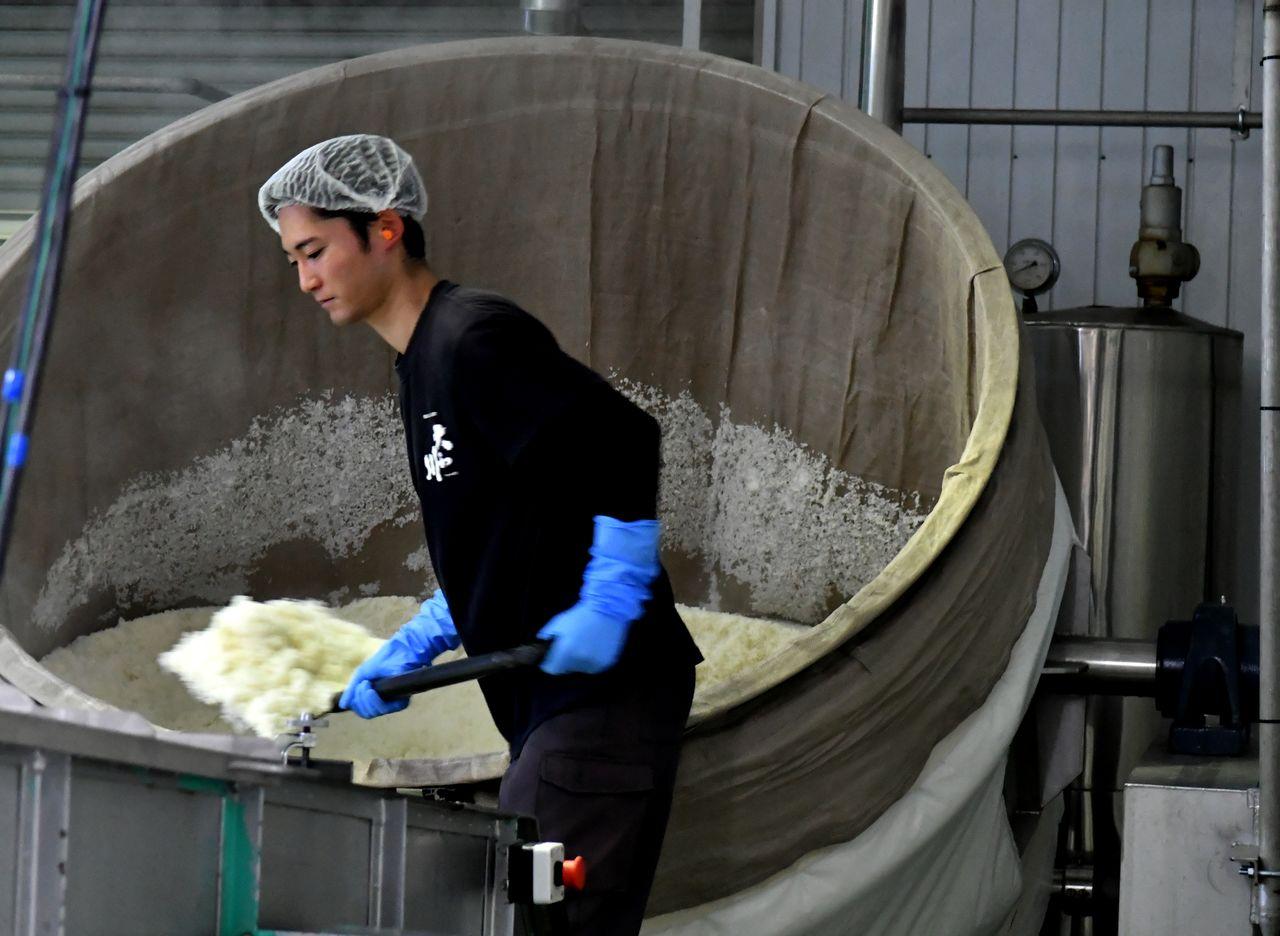 À la brasserie de saké Yamatogawa Shuzô, un employé retire d'une cuve de riz fraîchement cuit.