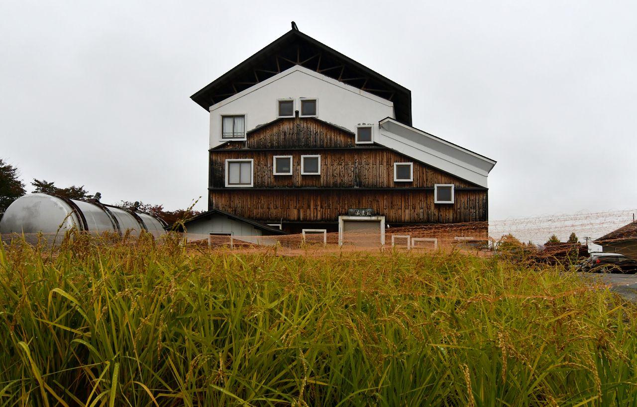 La brasserie Yamatogawa produit son propre riz, d'une qualité digne de grands sakés, sur un terrain à proximité.