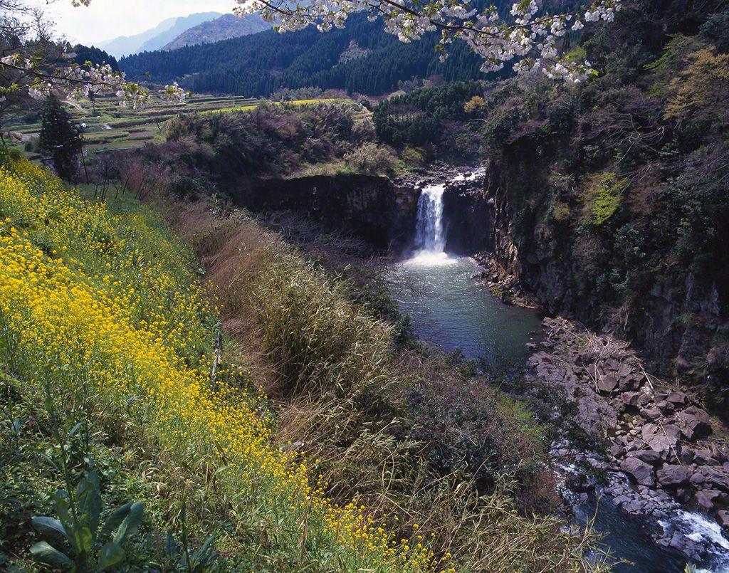 白川(攝影地:熊本縣)
