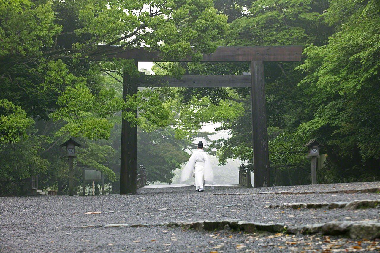 5月16日 每天早晨,神職人員在神宮中巡視。白衣新綠,相得益彰