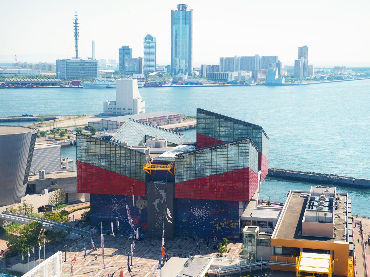 子どもから大人まで楽しめる水族館「海遊館」は、大阪屈指の人気観光スポット