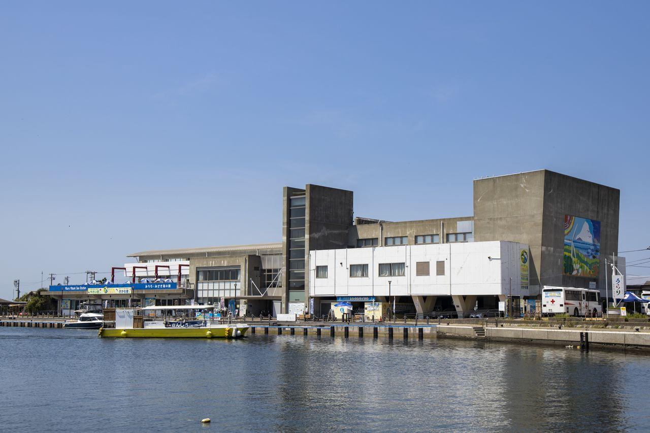 三崎フィッシャリーナ・ウォーフ「うらり」は、「三崎港」バス停の目の前。着岸しようとしているのは三崎・城ヶ島渡船