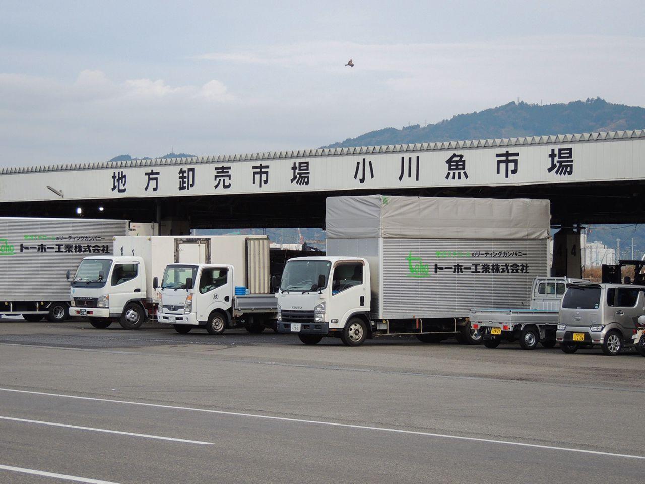 小川港の魚が取引される小川魚市場