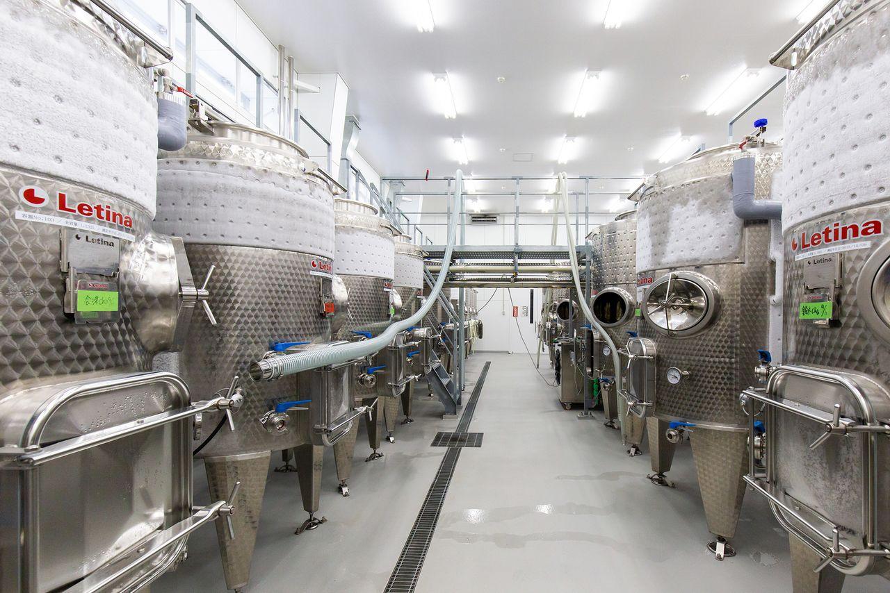 96本ある醸造タンクの総容量は5万リットル