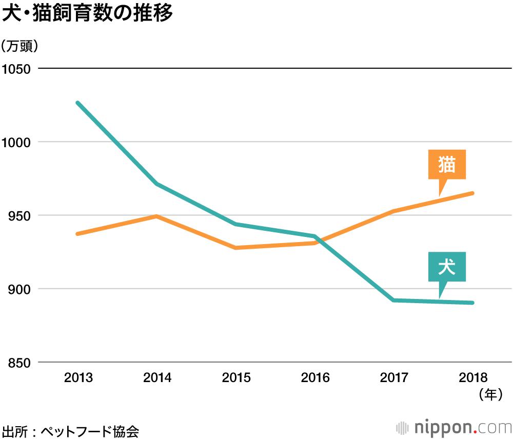 犬より猫 人気はなぜ 散歩不要 お金かからず長生き Nippon Com