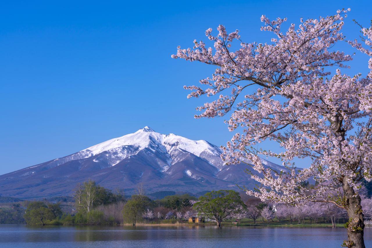 津軽富士 : 岩木山(PIXTA)