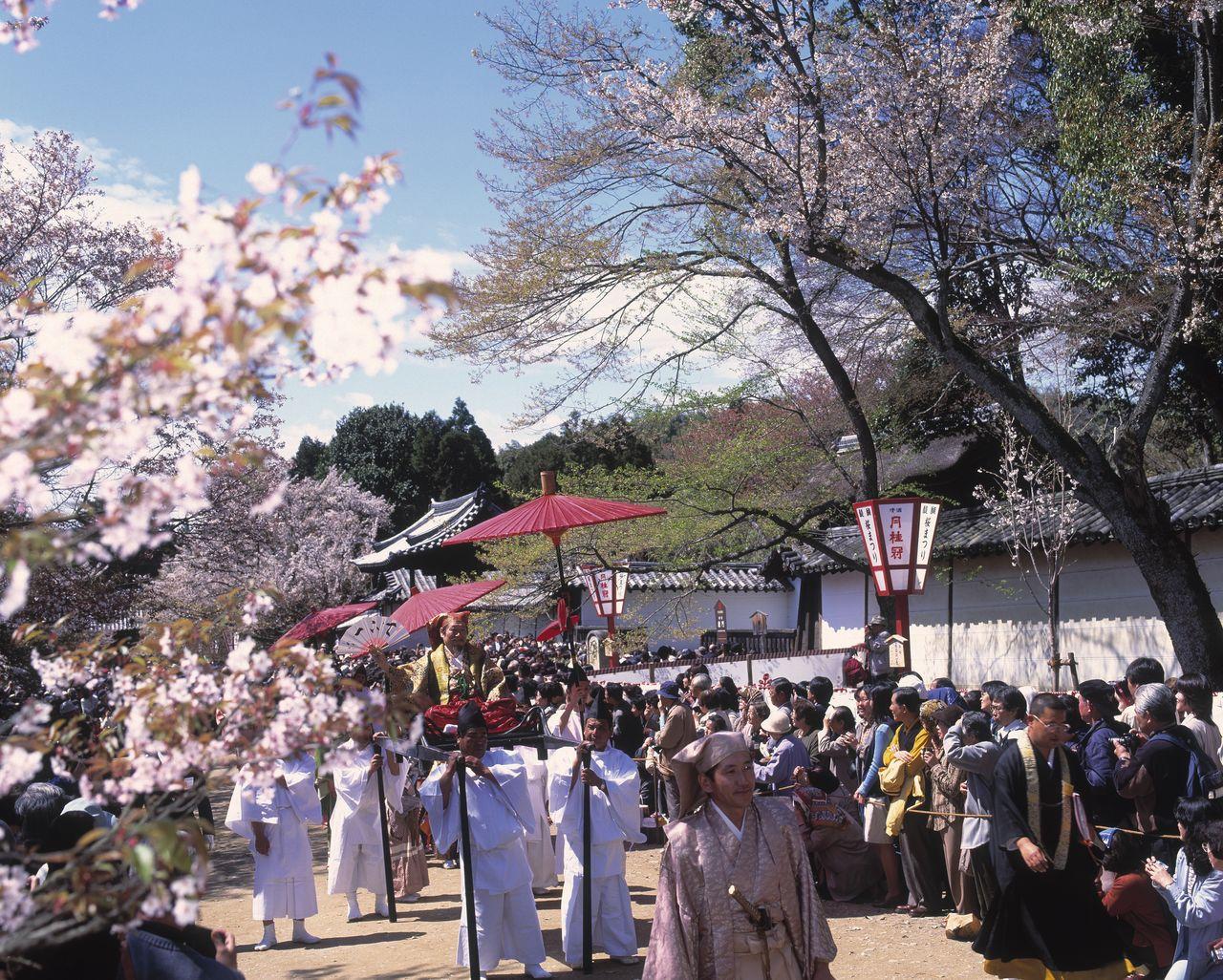 約1300人の大名が練り歩く醍醐寺の豊太閤(ほうたいこう)花見行列(京都市伏見区=1997年撮影、時事)