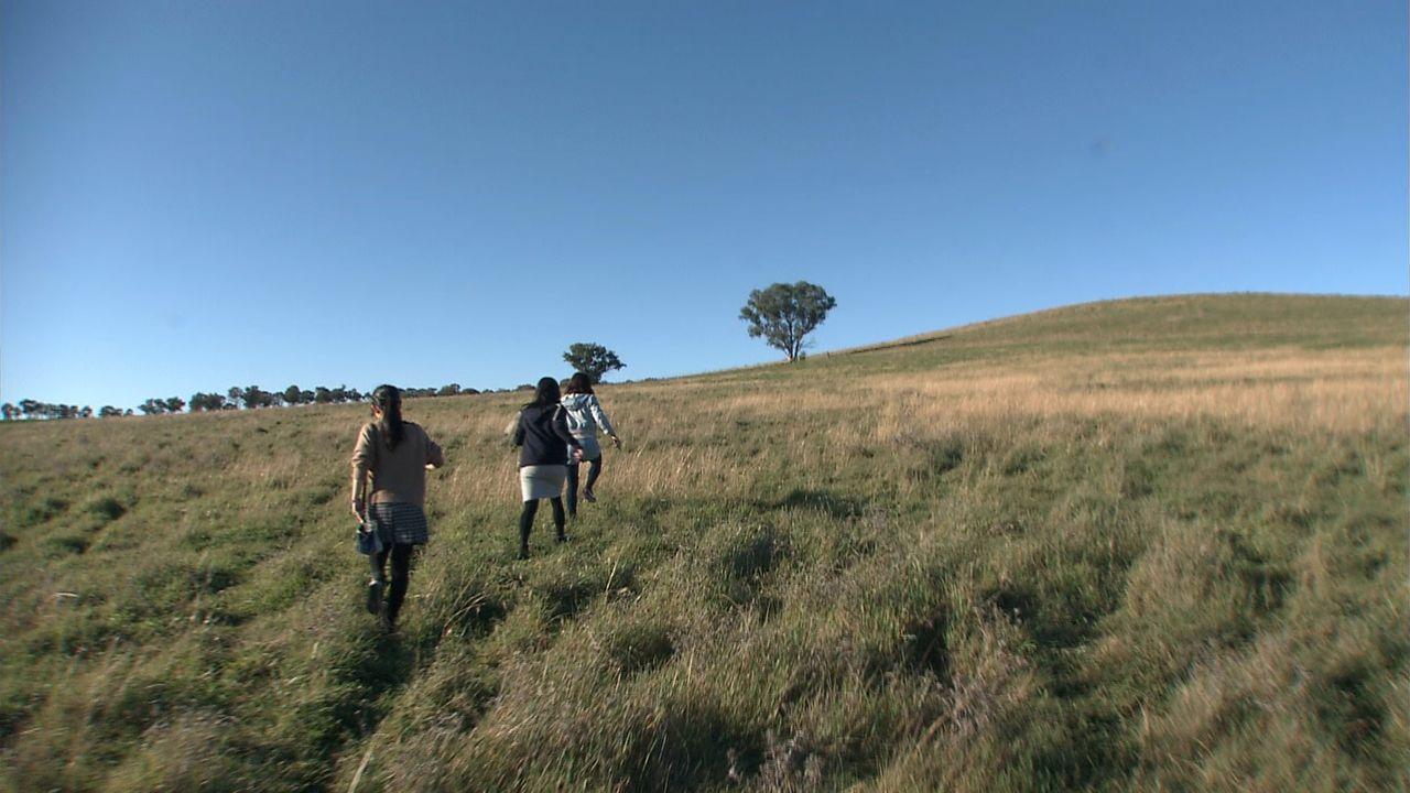 カウラ捕虜収容所の跡地。山陽女子高校の生徒らが、テントに隔離された立花さんが寂しいときに話しかけたユーカリの木に向かう ©瀬戸内海放送