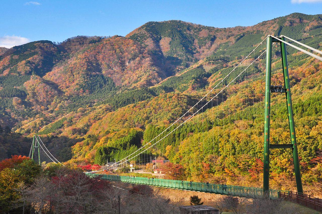 Подвесной мост Момидзидани через долину Сиобара, популярное туристическое место, особенно в сезон осенней листвы (фотография Ассоциации туризма и продукции префектуры Тотиги)