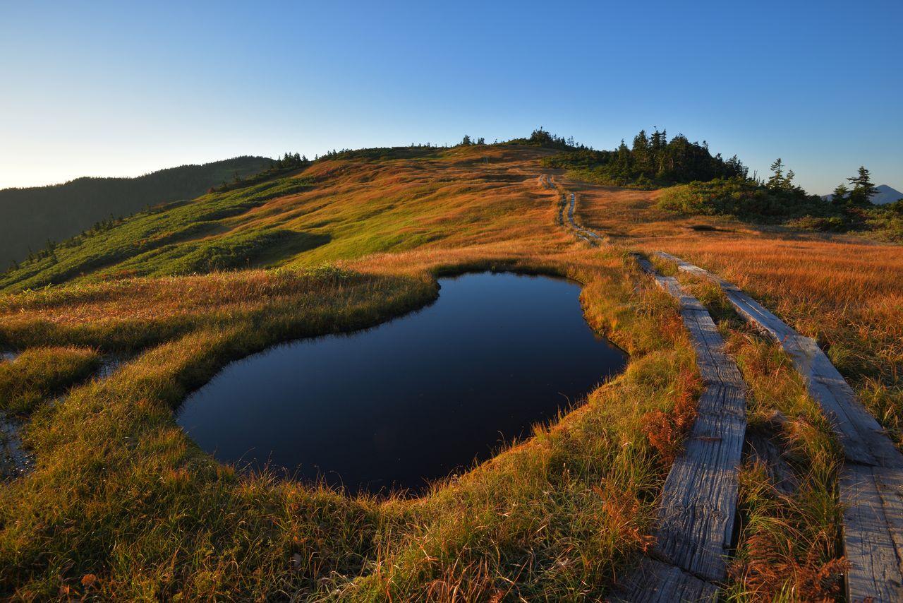 Трясины по дороге от горы Айдзу-Комагатакэ до горы Тюмондакэ (фотография PIXTA)