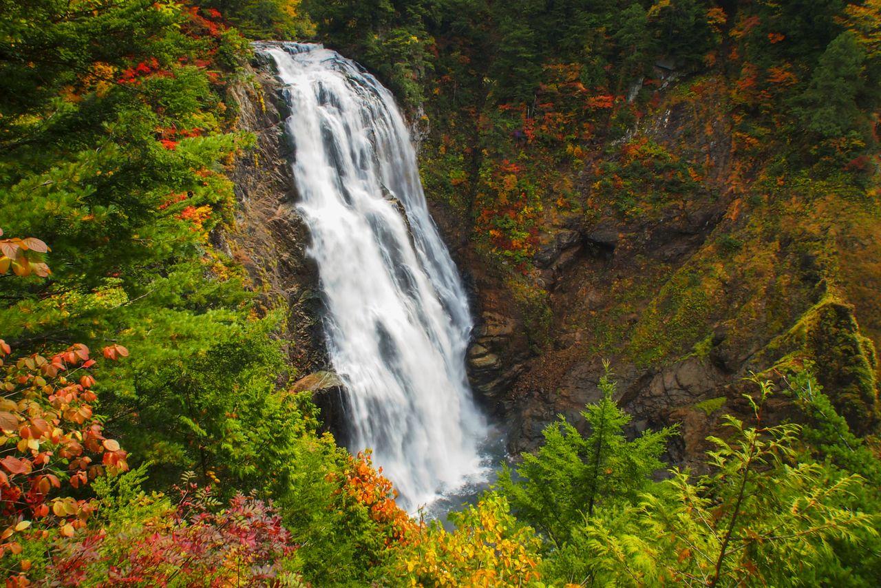 Водопал Сандзё-но-таки в верхнем течении реки Тадами, которая берет начало в Одзэ (фотография PIXTA)