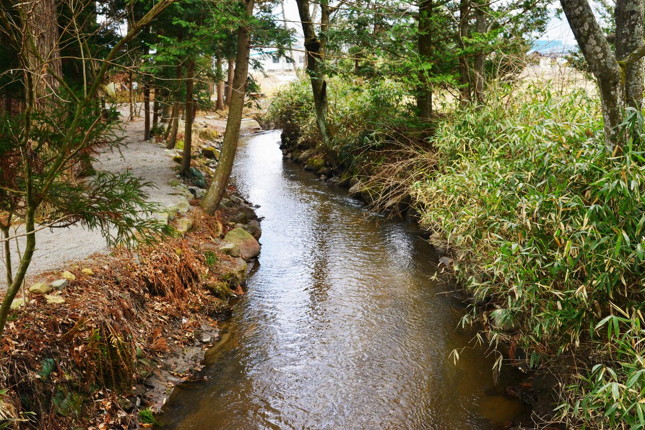Чистая вода Каппа-бути протекает среди пышной зелени