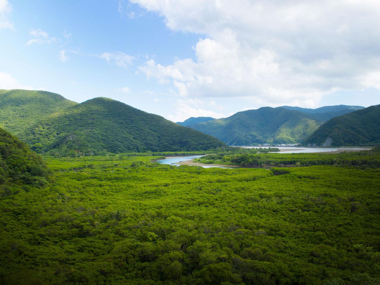 В этом широком устье сливаются реки Сумиё и Якугати