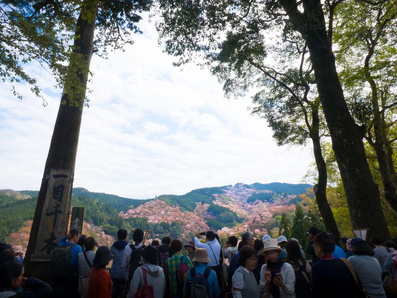Великолепный вид со смотровой площадки храма Ёсимидзу, объекта Всемирного наследия