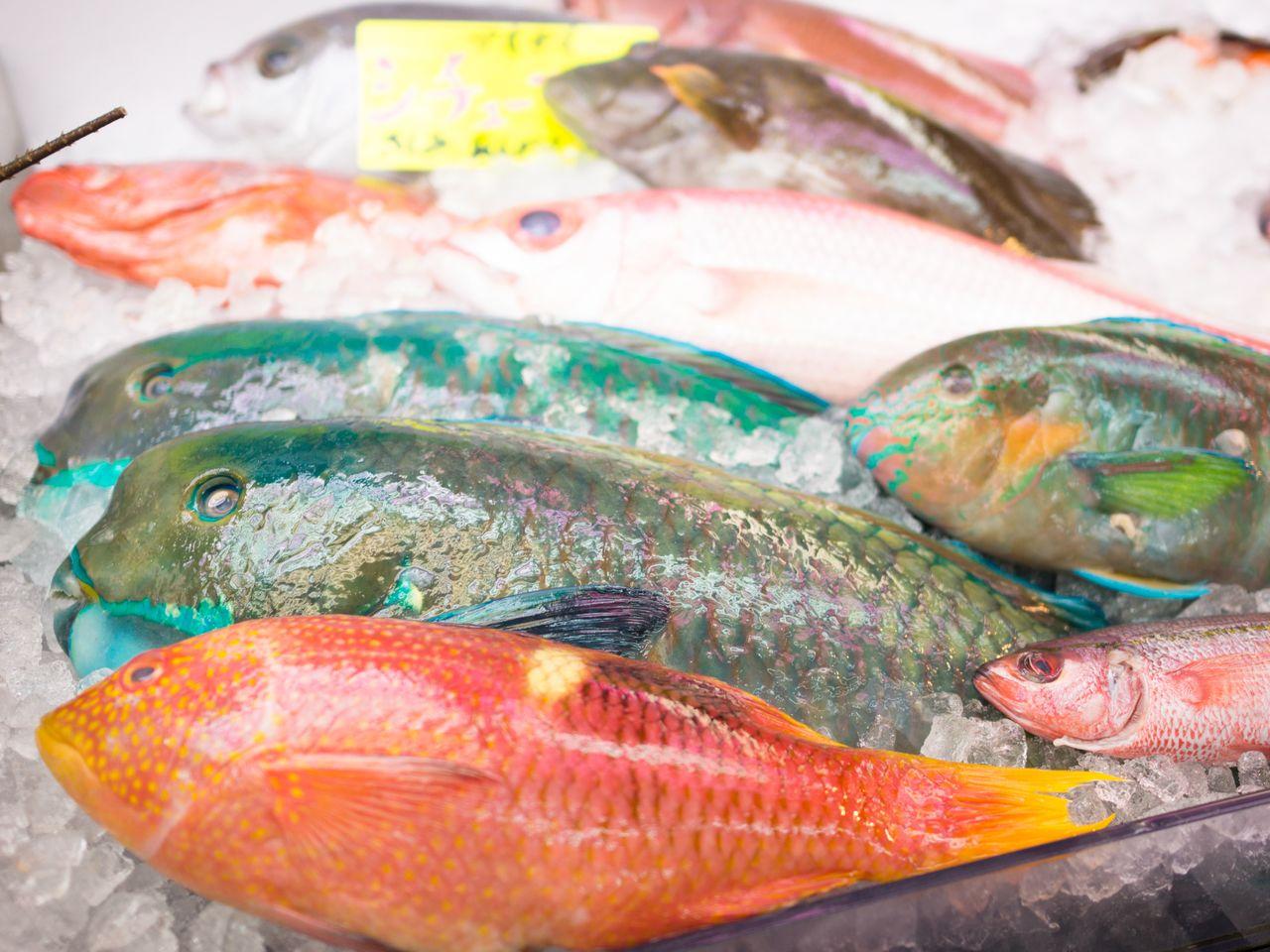 На рынке Макиси можно купить яркую местную рыбу, попросить продавца приготовить её и съесть прямо на месте