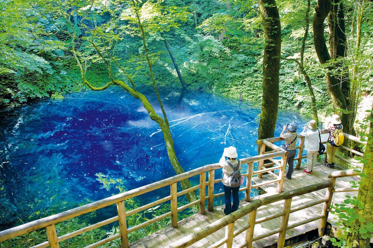 Вид на пруд Аоикэ с обзорной площадки (фотография предоставлена отделом по туризму администрации посёлка Фукаура)
