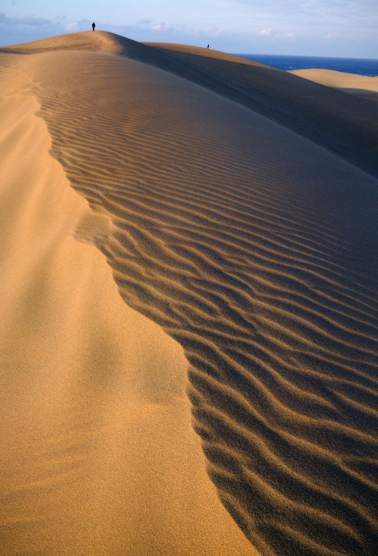 Крупнейшие в Японии дюны на побережье Японского моря