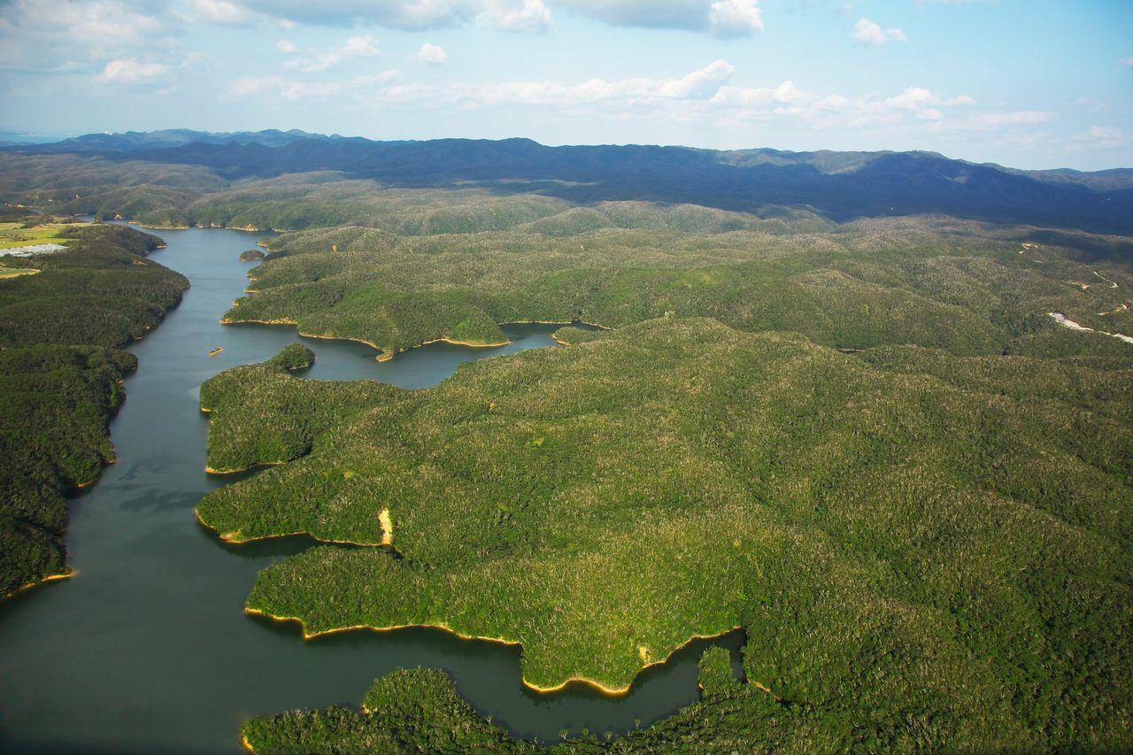 Вид обширного национального парка Ямбару на главном острове Окинавы (предоставлено OCVB)