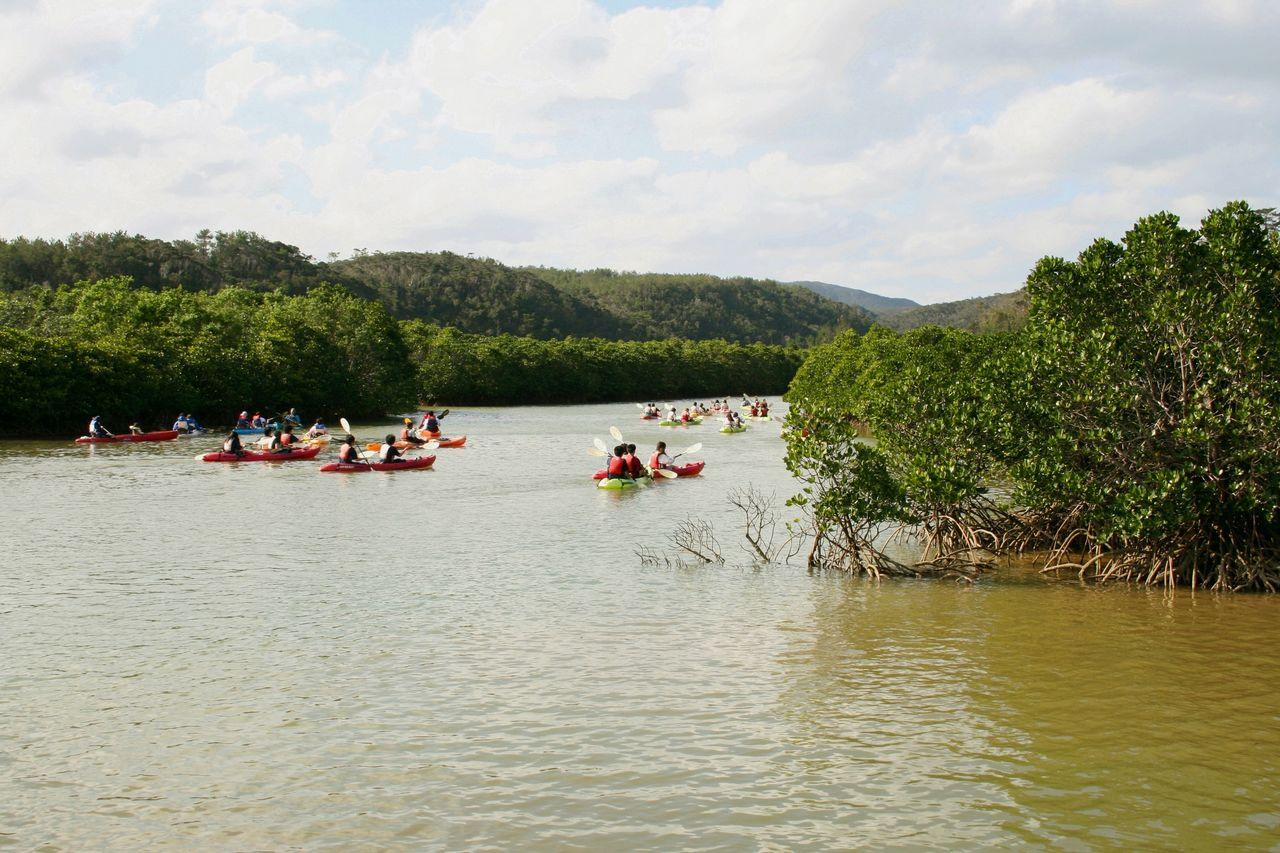 Посетители могут любоваться видами леса Хируги, примерно в километре от залива Гэсаси (предоставлено OCVB)