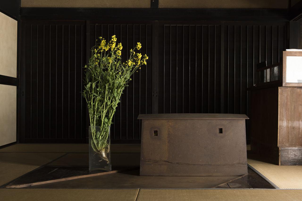 Цветущие побеги рапса приносят дуновение весны в гостиную, расположенную у входа