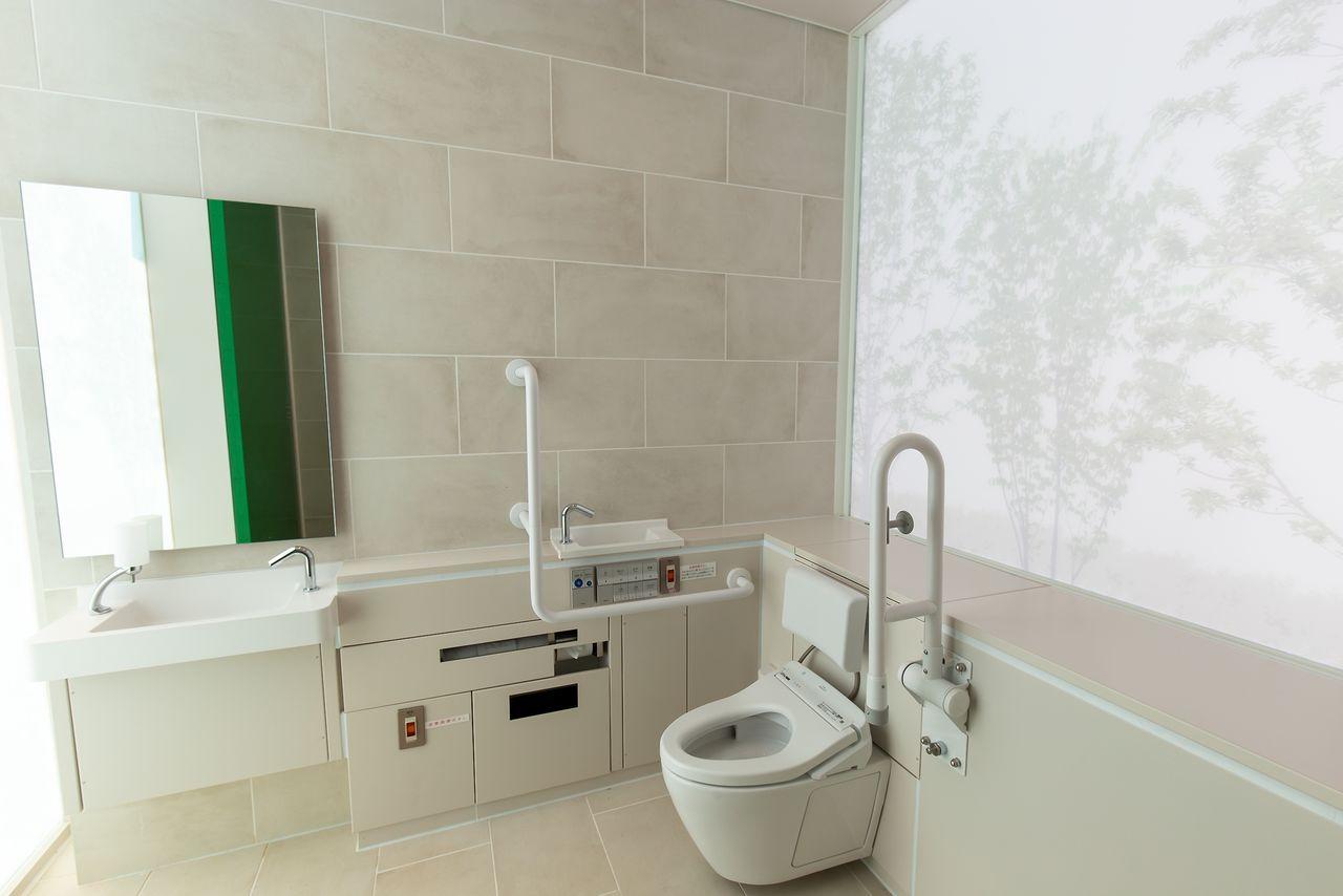 Уютное пространство с проступающим на матовом стекле узором с изображениями деревьев